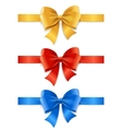 Satin Ribbon Set vector image vector image