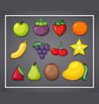 set of fruit in frame vector image