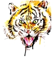 Watercolor tiger vector image vector image