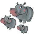 cartoon hippo on white background animals vector image