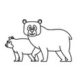 bears cartoon animal vector image vector image