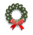 christmas new year green spruce branch vector image vector image