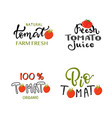 hand sketched tomato lettering typography vector image