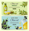 olive oil cartoon banners set vector image
