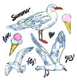 seabirds set of beautiful seagulls and icecream vector image vector image