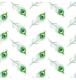 Seamless pattern with peacock feathers vector image