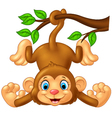 Cartoon cute monkey hanging on tree branch vector image vector image