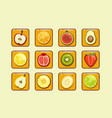 different fruit and berries block element for vector image vector image