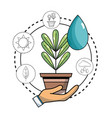 ecology plant with water drop and icons to vector image