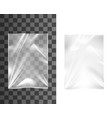 empty plastic bag clear container pouch or pack vector image