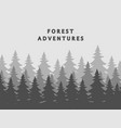 fir forest silhouettes background in mist vector image vector image