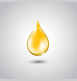 gold drop of oil essence vector image vector image