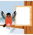 Happy Bullfinch on the Tree winter flat background vector image vector image
