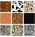 set nine seamless patterns with animal skin vector image