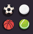 sport balls equipment vector image vector image