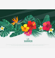 summer tropical background flat lay vector image