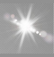 transparent sunlight vector image vector image