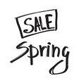Spring sale black grunge lettering isolated on vector image