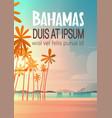 bahamans sea shore beach on sunset beautiful vector image