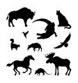 black silhouettes of north american animal vector image