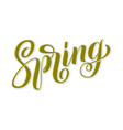 hand drawn lettering spring with shdow and vector image vector image