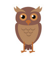 owl in flat design vector image