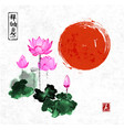 pink lotus flowers and red sun vector image