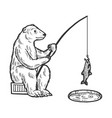 polar bear fishing sketch engraving vector image