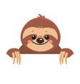 template of cute cartoon smiling joyful sloth vector image vector image