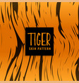tiger pattern skin texture design vector image