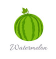 watermelon icon with title vector image