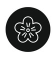 japan flower sakura icon isolated on white vector image