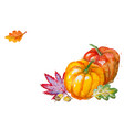 pumpkin with autumn leaves vector image