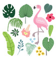 summer tropical graphic elements with flamingo vector image