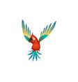 cute parrot colorful beautiful jungle cartoon vector image