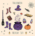 hand drawn halloween set of hat cauldron broom vector image