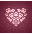 Heart of The Cat Traces vector image vector image