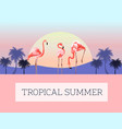 sea with flamingo in water exotic beach landscape vector image vector image