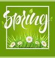spring frame green grass and daisies vector image vector image