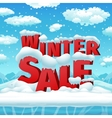 Winter sales poster vector image vector image