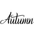 black handwritten inscription autumn vector image