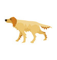 flat cartoon style dog vector image vector image