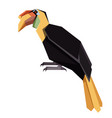 flat geometric winkled hornbill vector image vector image