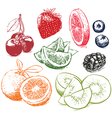 Hand drawn collection of fruits vector image vector image