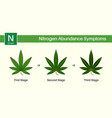 medical cannabis growing problems and plant pot vector image