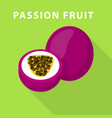 passion fruit icon flat style vector image vector image