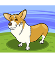 Pembroke welsh corgi dog cartoon
