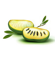 photo realistic 3d pulp and seeds with vector image vector image