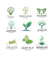 set tree logo vector image vector image