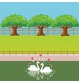 swan couple in lake love heart shaped tree behind vector image vector image